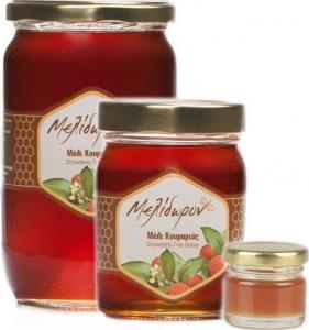 Μέλι Κουμαριάς (Φθιν.) 30gr (Δείγμα)